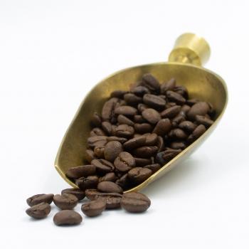 Macauba - ganze Bohnen