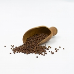 Guineapfeffer / Paradieskörner